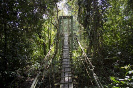 姆魯國家公園