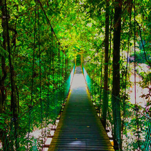 藍比爾國家公園3